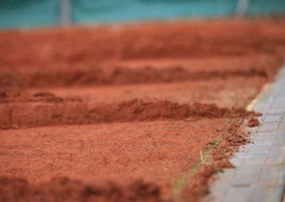 PTS-Tennisplatzservice Frühjahrsinstandsetzung Tipp-7125